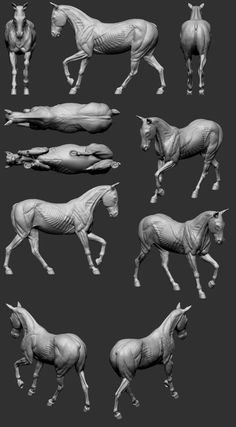 Art History Paintings in American History – Viral Gossip Anatomy Bones, Horse Anatomy, Animal Anatomy, Horse Drawings, Cartoon Drawings, Animal Drawings, Horse Sculpture, Animal Sculptures, Art History Lessons