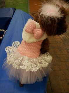 Customizable Cute Princess Dress for DogsWinter by Anothersummer, $28.00