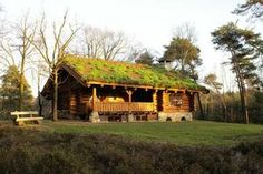 Noorse blokhut Short Break, Earthship, Cabins In The Woods, Log Homes, Renting A House, Netherlands, Holland, Tiny House, Places To Visit