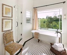 Victorian bathroom, ok i dont have a tub but i like these colors for my bathroom
