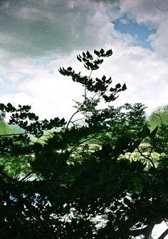 ano hito ga soko ni iru dakede  #奈良  #秋  #空  #フィルム  #フィルムカメラ  #EE-3