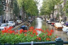 Amsterdam Guide of Things to Do on a Budget