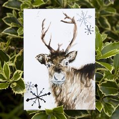 Silky postcards printed to the highest standard, featuring my hand-drawn pen and ink Reindeer illustration in blues and browns. Featuring my Inky Reindeer hand drawn illustration on the front of each card, and a ring of blue snowflakes framing a space for all your lovely thoughts on the reverse. Perfect for Christmas cards, quick notes, Christmas thank you letters, pin up pictures and Christmas Party invitations. You can opt to have a range of packaging options, from either a biodegradable…