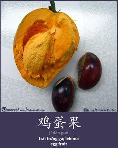 鸡蛋果 - Jī dàn guǒ - trái trứng gà; lekima - egg fruit
