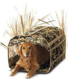 Take a look at this Camouflage Insulated Dog Blind & Duck Decoy Bag by Classic Accessories on #zulily today!