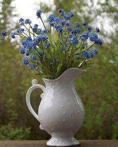 """A flor Miosótis (Não-me-esqueças) é conhecida também em outras línguas como: """"Forget-me-not"""" (Inglês), """"Vergissmeinnicht"""" (Alemão), """"Nomeolvides"""" (Espanhol), """"Nontiscordardimé"""" (Italiano)."""