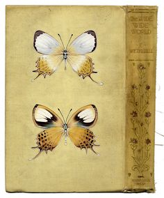 Delicately Beautiful Paintings of Insects on Vintage Books