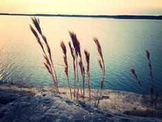 Stillhouse Lake - Central Texas