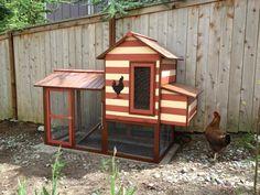 too cute chicken coop