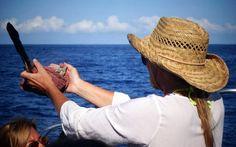 Gerade jetzt in Hawaii die sehr tiefgehende Ausbildung für Schamanische Heilmethoden.  Der nächste Termin mit verfügbaren Plätzen ist der 22. Oktober - 2. November 2018 (12 Tage): Ausbildung für Schamanische Heilmethoden auf Hawaii, inkl. Besuch von Kraftplätzen und Schwimmen mit freien Delphinen: http://lisarainbow.com/schamanische-heilmethoden-hawaii-2018-okt.html
