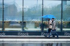 Rainy day royalty-free stock photo