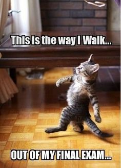 This is the way we all walk
