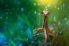 shower by Lee Peiling on 500px