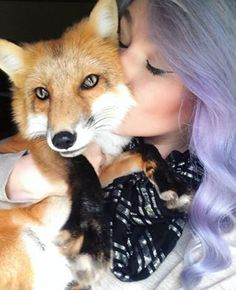 Juniper's owner created this Instagram account to explain what it's like to live with a domesticated fox, and she always takes time to answer her followers' questions.   Community Post: 19 Reasons You Need To Follow Juniper The Fox On Instagram