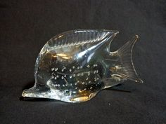 A pretty little fish - great for home or office!