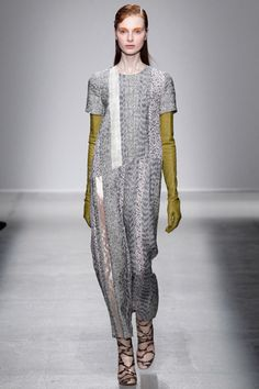 Christian Wijnants Fall 2014 Ready-to-Wear Collection Slideshow on Style.com