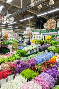 62 Totally Florescent Photos of the San Francisco Flower Mart