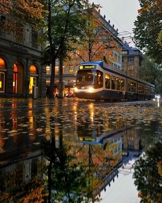 Travel Awesome - Autumn in Zürich, Switzerland. Street Photography, Nature Photography, Travel Photography, Beautiful World, Beautiful Places, Nature Architecture, Photos, Pictures, Scenery