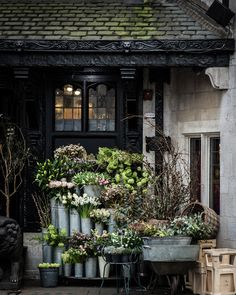 londonflowershop
