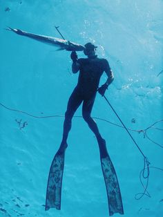 The sun is shining and great hunting adventures in Mexico. Fresh fish is on the table! SpearfishingToday.com #spearfishing #mexico #polespear #freediving #diving #hunting #fishing #cozumel