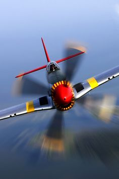 P-51; The Flying Mustang!