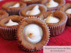 Gingerbread Cheesecake Bites @createdbydiane These were so easy and yummy too!  I used pre-portioned cookie dough to make it easier!
