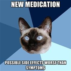 Chronic Illness Cat - new medication possible side effects worse than symptoms