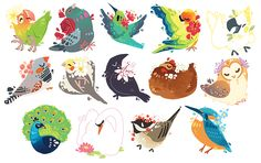 BIRDS AND BIRD ACCESSORIES, hawberries:   a very tiny flock! get the stickers!...