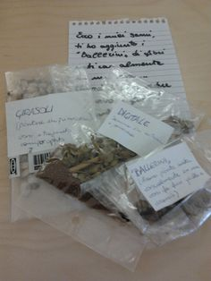 I semi per l'orto (regalati e non)