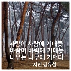 경남 창원의 대표적인 시인인 김유철의 감수성. 경남민예총 부회장님.