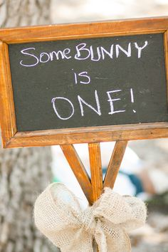 Peter Rabbit first birthday party...Fun sign to greet the party guests!