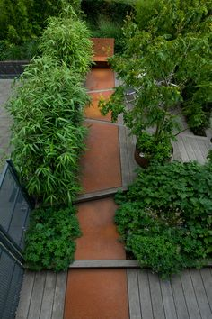 Use of contrasting texture, materials and oblong lines with greenery - bamboo and other shrubs/trees. Stunning. Jos van de Lindeloof | Daktuin