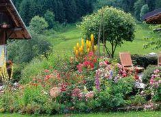 Jardin d'altitude : la flore locale