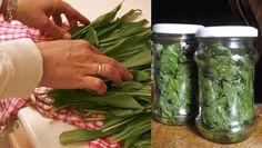 Stačí ho jen dát do sklenice a zalít: Tento recept z medvědího česneku Vám pročistí ledviny, močové cesty a poradí si i s vysokým tlakem! Fresh Rolls, Pickles, Sprouts, Asparagus, Green Beans, Cucumber, Homemade, Vegetables, Health