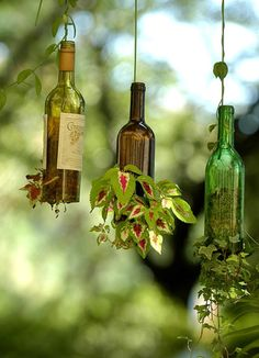 great hanging plant holders