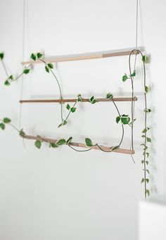 Balcony garden Vines - DIY An Indoor Trellis for Climbing Vines. Balcony garden V Indoor Climbing Plants, Climbing Vines, Indoor Plants, Indoor Flowers, Wall Trellis, Vine Trellis, Plant Trellis, Garden Trellis, Plant Wall