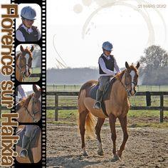 #digital #scrapbooking #layouts, layouts, digital, scrapbooking, ideas, layout, horses