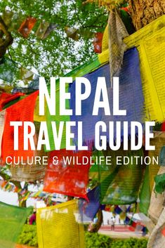 Nepal is not all trekking! Prepare for your own trip to Nepal with this culture and wildlife Nepal travel guide for your perfect 12-day journey. #NaturallyNepal #travelguide #TBIN #HTM2017 #NepalGuide https://www.littlethingstravel.com