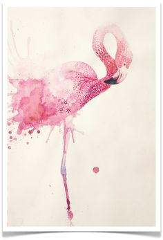 Flamingo in watercolor by Annelie Solis