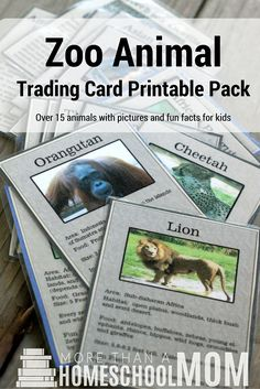 zoo animal trading card printable pack - Planning a trip to the zoo? This free printable would be the perfect zoo field trip companion. Learn more about animals while enjoying a fun trip. Animal Facts For Kids, Fun Facts For Kids, The Zoo, Asian Elephant, Science Activities, Nature Activities, Steam Activities, Science Fun, Science Ideas