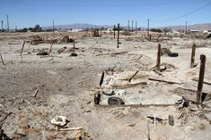 The Salton Sea, California's largest lake by volume, exists by accident. It was created after a rain caused the Colorado River to burst through the banks of an irrigation canal. The sea quickly became something of an ecological nightmare soup, with a shoreline littered with thousands of dead fish.