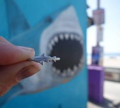 Great White Shark Ring Ocean Jewellery by Sophie Janson