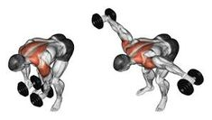 Photo about Lifting dumbbell in hand to lean forward. Exercising for bodybuilding. Target muscles are marked in red. Initial and final steps. Illustration of workout, rhomboid, bodybuilding - 43605552 Fitness Workouts, Gym Workout Tips, Dumbbell Workout, Easy Workouts, At Home Workouts, Trainer Fitness, Bike Workouts, Swimming Workouts, Swimming Tips