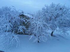 Sanabria y CYL en imágenes de nieve