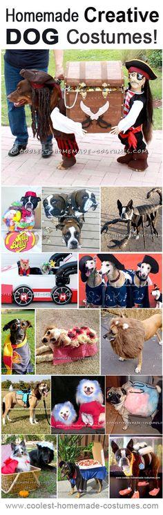 Top 15 DIY Creative Dog Halloween Costume Ideas