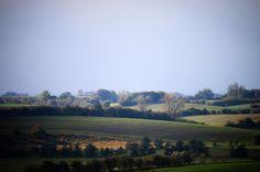 Vestfynsk bakkelandskab ved Haarby #visitfyn #fyn #visitdenmark #naturelovers #natur #denmark #danmark #dänemark #landscape #nofilter #sky #assens #mitassens #fynerfin #vielskernaturen #visitassens #instanature #forrest #skov #efterår #picoftheday #fall