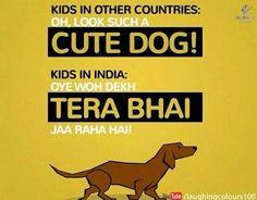 Funny Hindi Quote Punjabi Jokes, Indian Meme, Hindi Quotes, Cute Dogs, Funny Memes, India India, Kids, Beauty Secrets, Laughing
