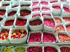 A beautiful bright Bunch Of lovely Roses♥♥♥