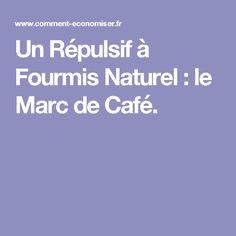 Un Répulsif à Fourmis Naturel : le Marc de Café.