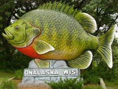 "Onalaska, WI ---- Onalaska is known as ""The Sunfish Capital of the World."" AKA My hubbies hometown"